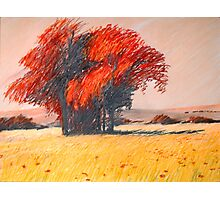 rote Insel Photographic Print