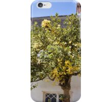 Ye Old Holly Tree...........part 2 iPhone Case/Skin