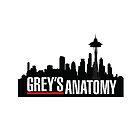 Grey's Anatomy  by jessguida