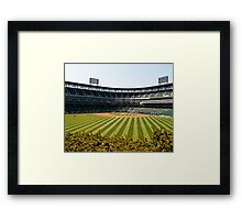 Sox Park Framed Print
