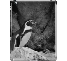 The King of the Mountain iPad Case/Skin