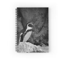 The King of the Mountain Spiral Notebook