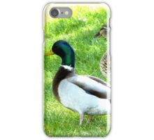 Mr. and Ms. Duck iPhone Case/Skin