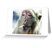 funy monk Greeting Card