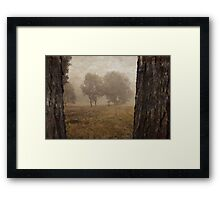 Winding Dirt Road through the Pinnacle in Canberra/ACT/Australia Framed Print