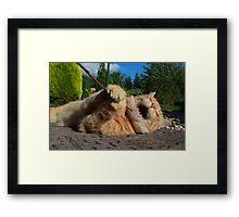 Karaoke kitty Framed Print