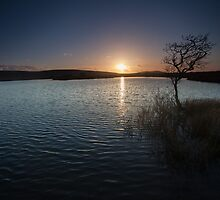 Broad Pool North Gower by leightoncollins