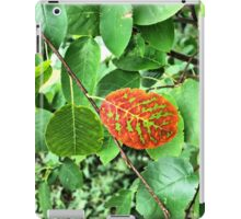 Fall is Comming iPad Case/Skin