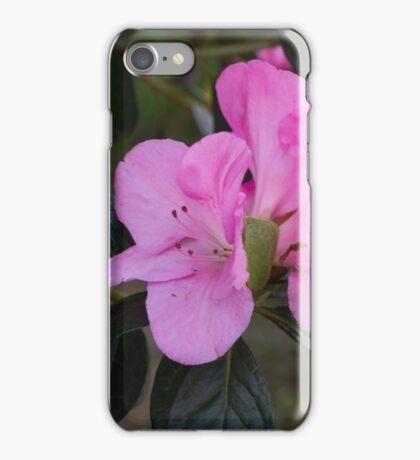peony in spring iPhone Case/Skin