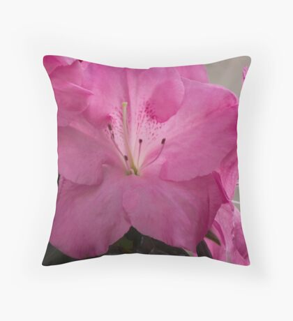 peony in spring Throw Pillow