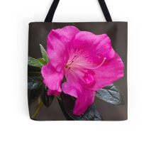 peony in spring Tote Bag