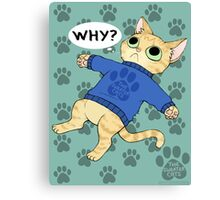 thesweatercats - WHY? Canvas Print
