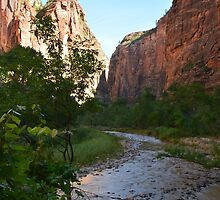 Zion NP Utah by Rob Schoon