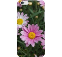 pink daisy iPhone Case/Skin