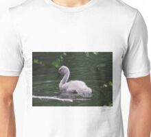 Cygnet on the lake at Tehidy Woods in Cornwall.  Unisex T-Shirt