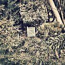 Hidden garden by AprilRichardson
