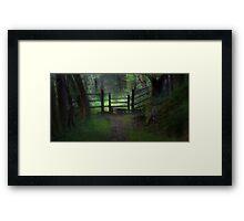 Woodland path and stile Framed Print