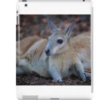 Wallaby Resting  iPad Case/Skin