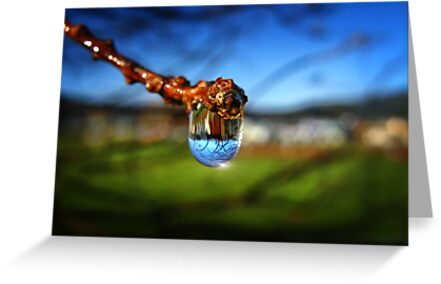 A Raindrop in a Suburb, a Suburb in a Raindrop by Peter Kurdulija