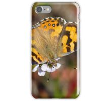 Painted Lady Butterfly iPhone Case/Skin