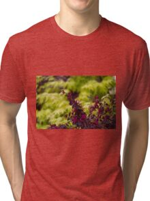 maple in spring Tri-blend T-Shirt