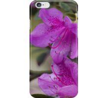 flowers in spring iPhone Case/Skin
