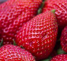 fruit by spetenfia