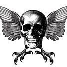 Flying Skull by monsterplanet