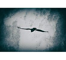 Flying into the Light Photographic Print