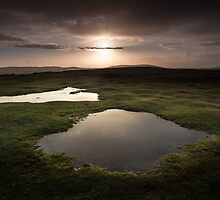 Cefn Bryn puddles Gower by leightoncollins