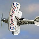 Hawker Demon I K8203 G-BTVE banking by Colin Smedley