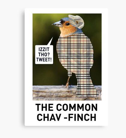 CHAV-FINCH GREETING CARD Canvas Print