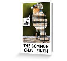 CHAV-FINCH GREETING CARD Greeting Card