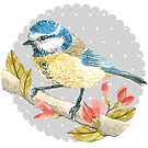 Blue Tit by Samantha Mabley