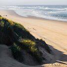 Ocean Sands - 1 ©  by © Hany G. Jadaa © Prince John Photography