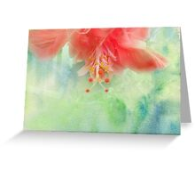 Softly Colored Greeting Card