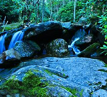 Little Waterfall by Charlotte Hertler