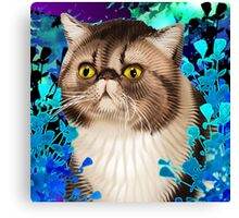 Sommer of Snootypuss Canvas Print
