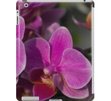 orchid in bloom iPad Case/Skin