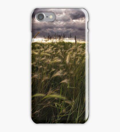 Prairie Grasses Northeastern Colorado iPhone Case/Skin