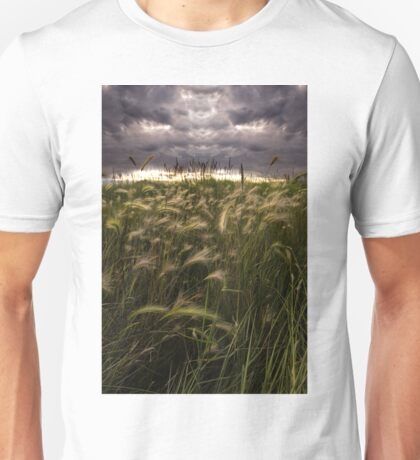 Prairie Grasses Northeastern Colorado Unisex T-Shirt