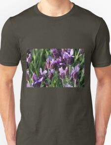 flower in spring T-Shirt