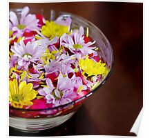 Bowl with chrysanthemum flowers Poster