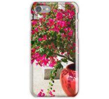 Bougainvillea flowers in a patio iPhone Case/Skin