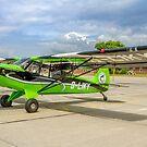 """Aviat Husky A-1C-180 """"Louise"""" G-LIKY by Colin Smedley"""