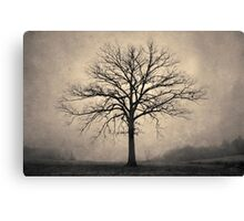 Bare Tree and Fog Toned Canvas Print
