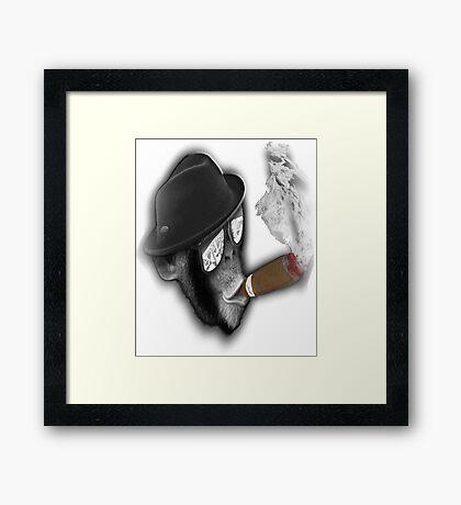 cigar ,cigar monkey ,poker, glasses ,the nuts, Framed Print