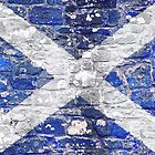 Saltire Stone by Stuart  Fellowes