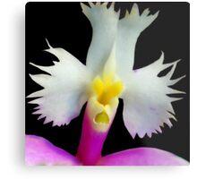 Beaker - Orchid Alien Discovery Metal Print