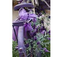 bicycle with lavender Photographic Print